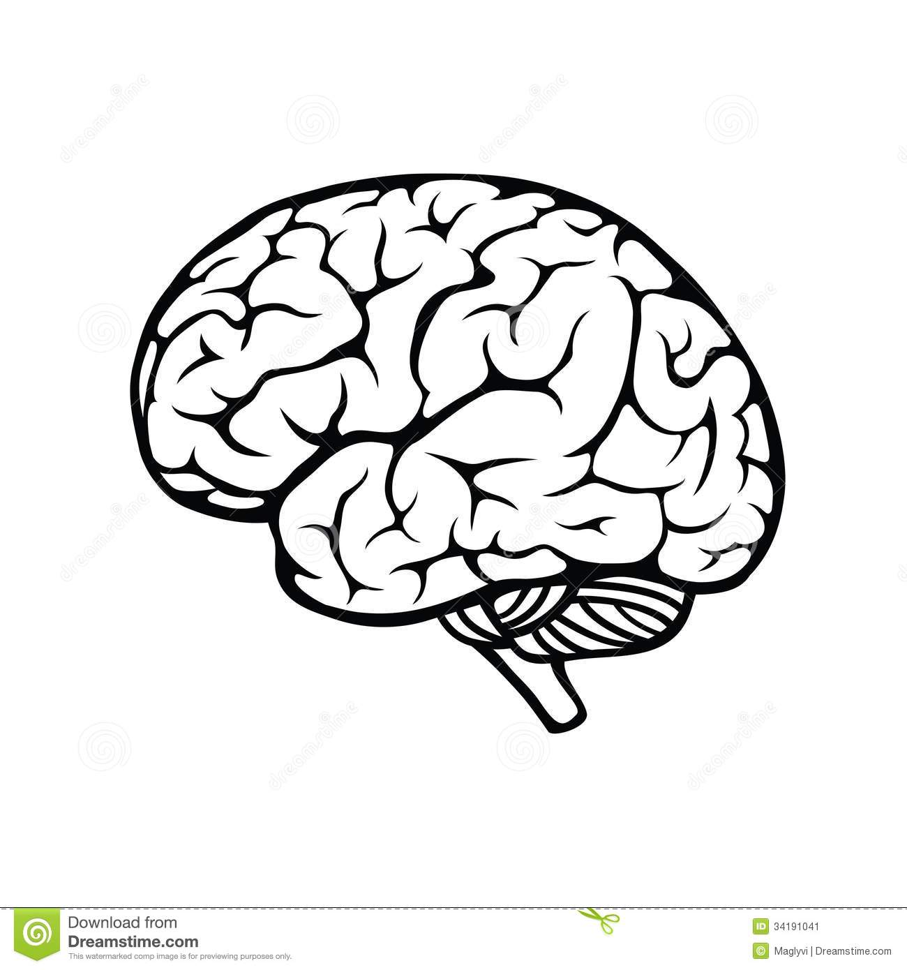 Brain Outline Coloring Page