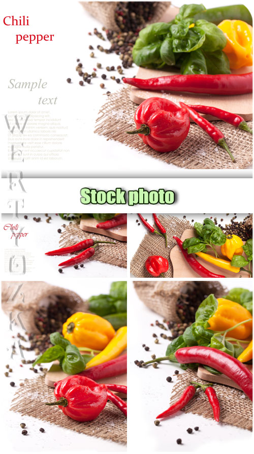 Chili Pepper Mexican Food Clip Art