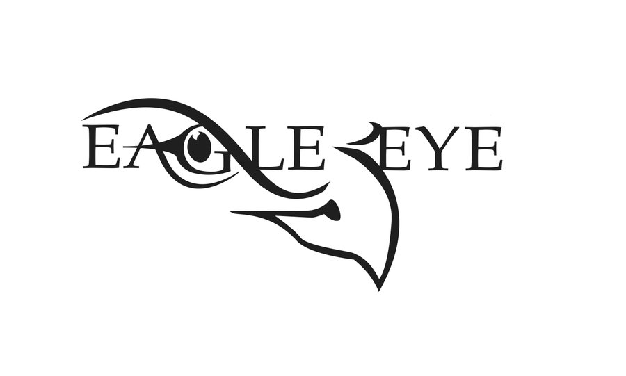 8 Eagle Eye Logo Design Images