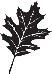 Oak Leaf Silhouette Clip Art