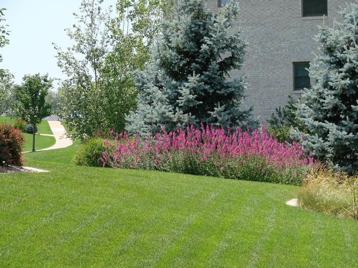 Pinterest Landscaping