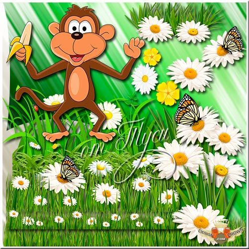 Clip Art Butterflies and Daisies