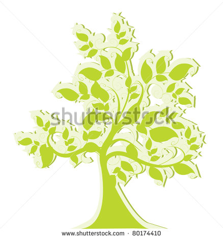 Elm Tree Leaves Illustration