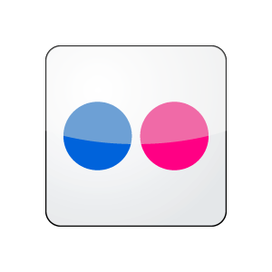 Flickr Icon Vector Logo