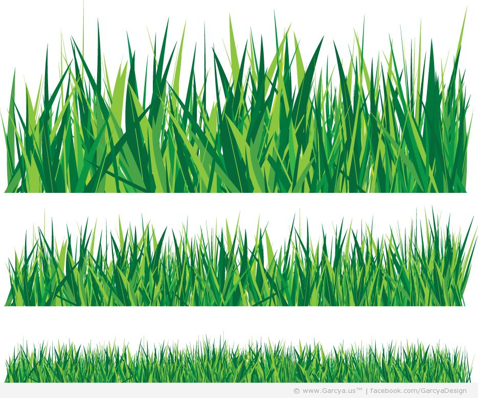 15 Grass Vector Graphic Images