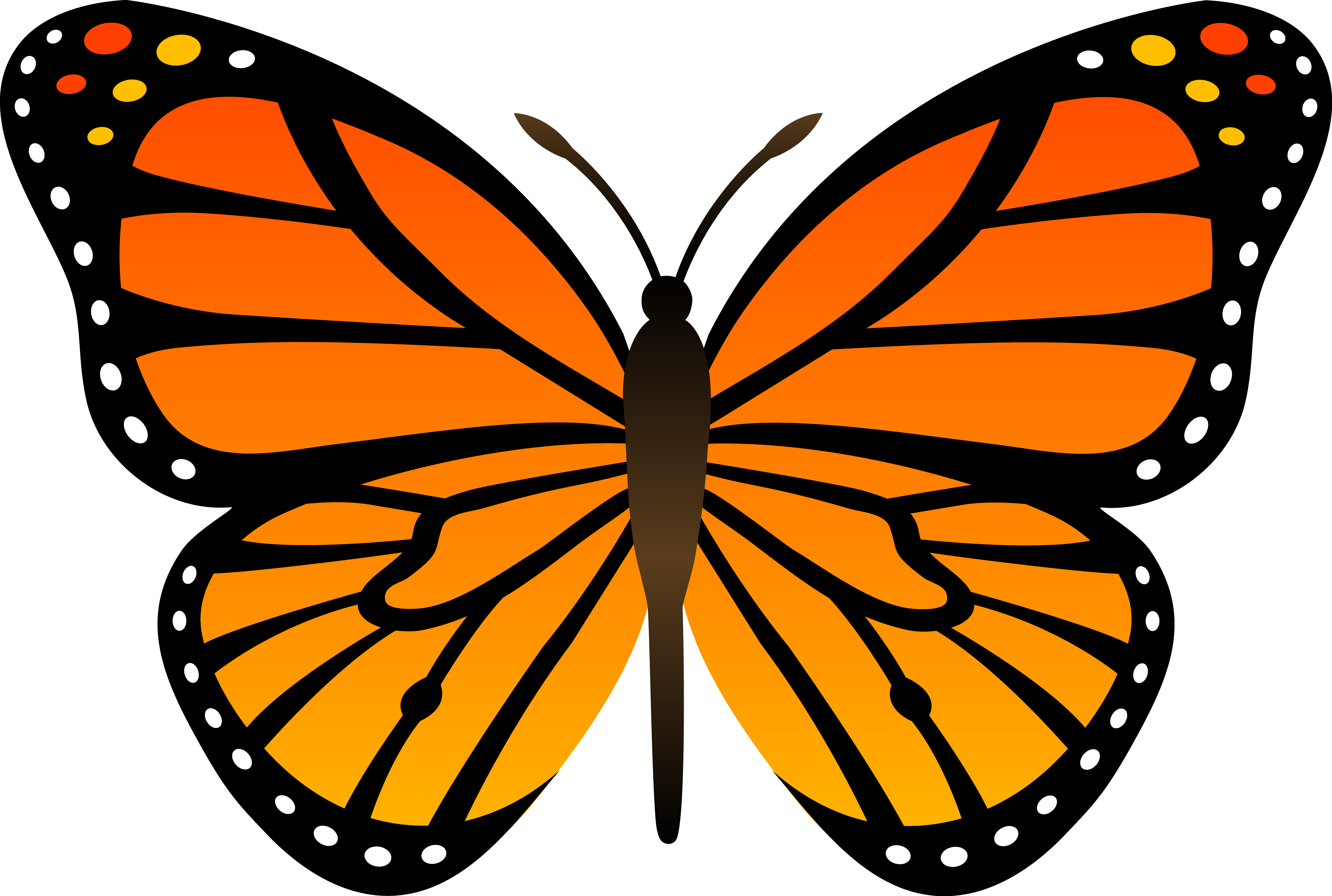 18 Picture Butterfly Vector Clip Art Images