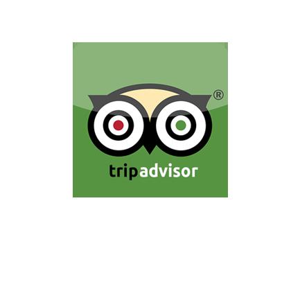TripAdvisor Icon Vector Logo