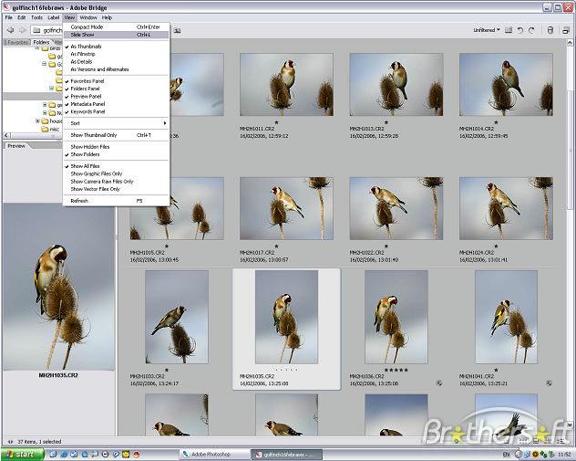 photoshop cs2 software free download full version windows 7
