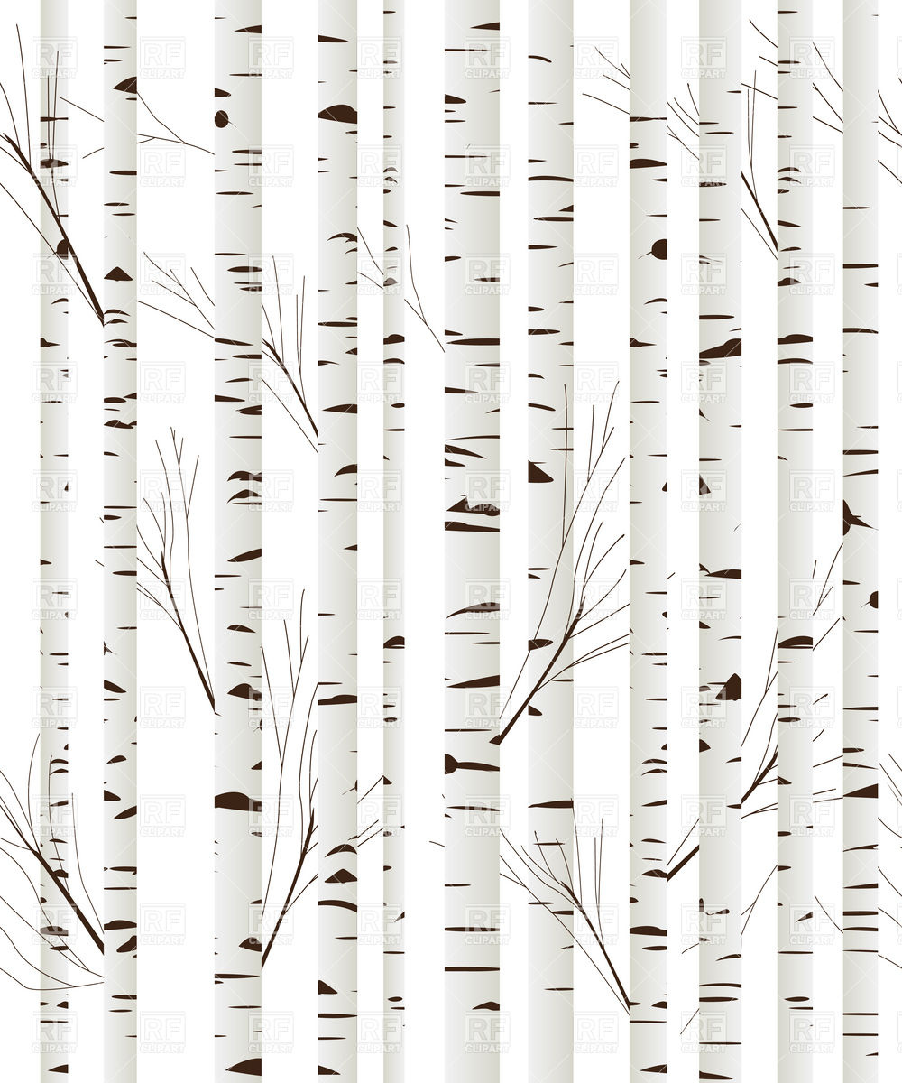 7 Birch Tree Silhouette Vector Images