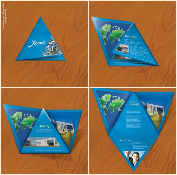 Cool Brochure Design Ideas