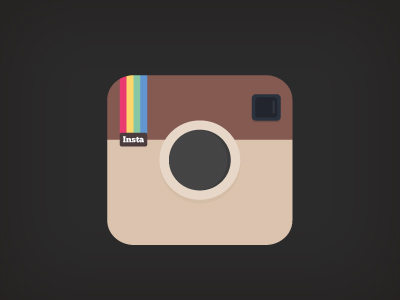 Flat Instagram Icon Vector