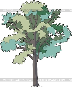 12 Ash Tree Vector Images