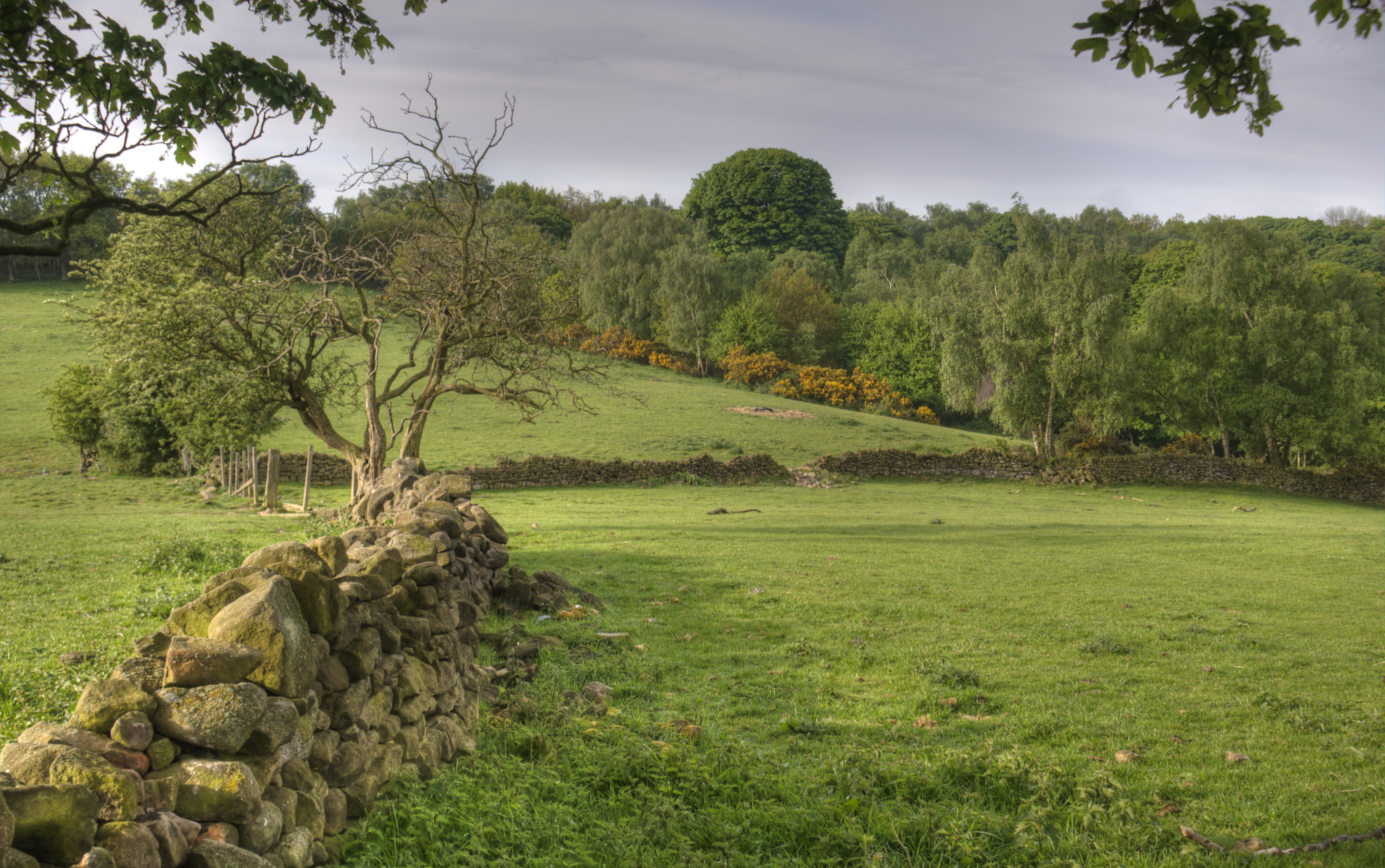 Derbyshire England Landscape