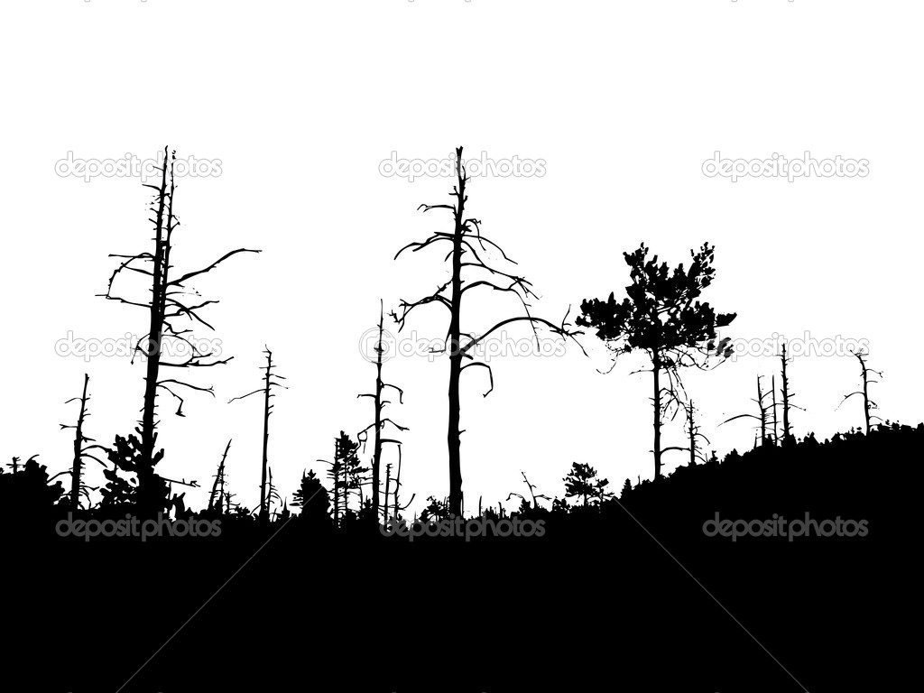 17 vector forest silhouette images forest tree