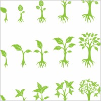 Growing Tree Graphic