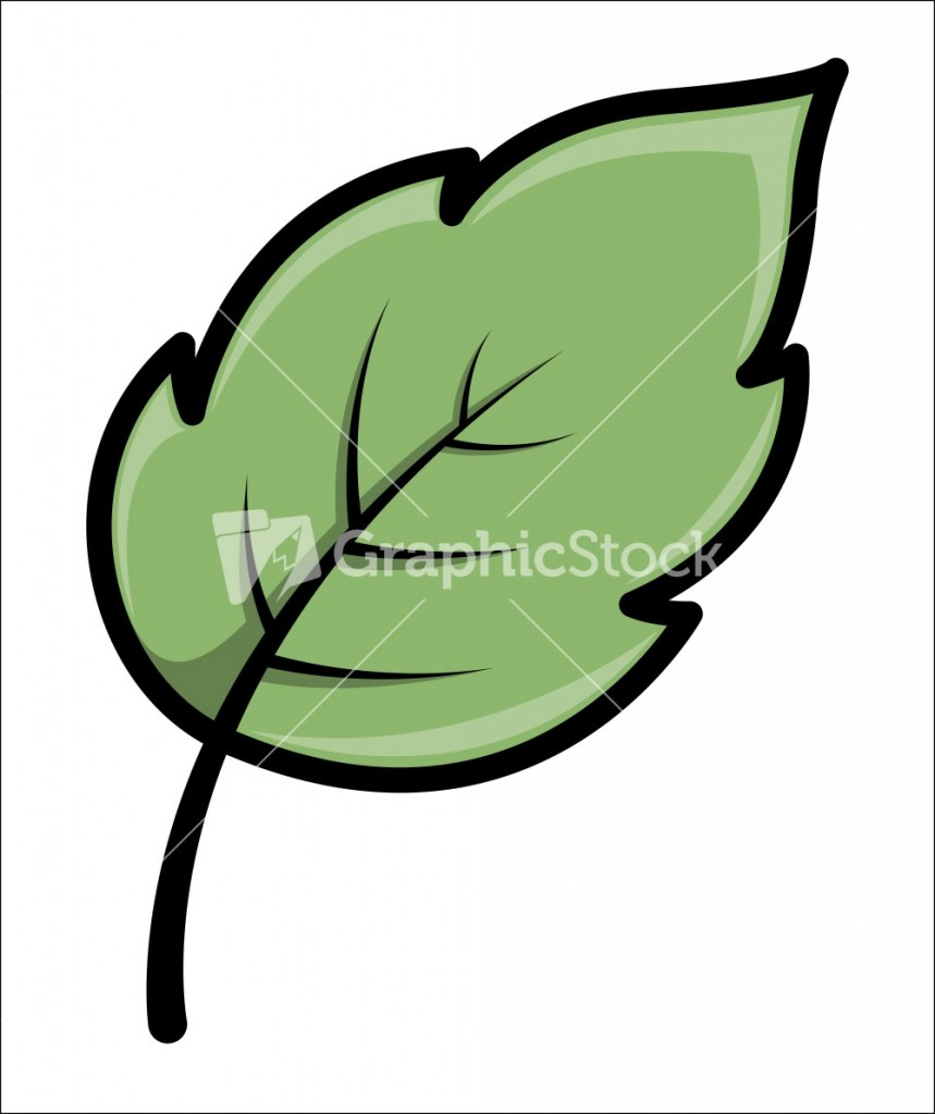 16 Simple Leaf Vector Images