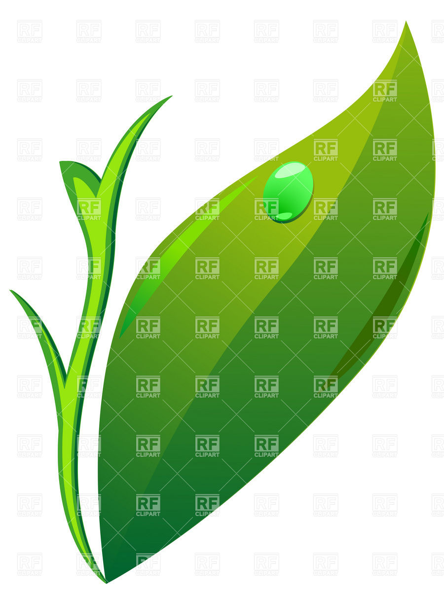Simple Leaves Clip Art