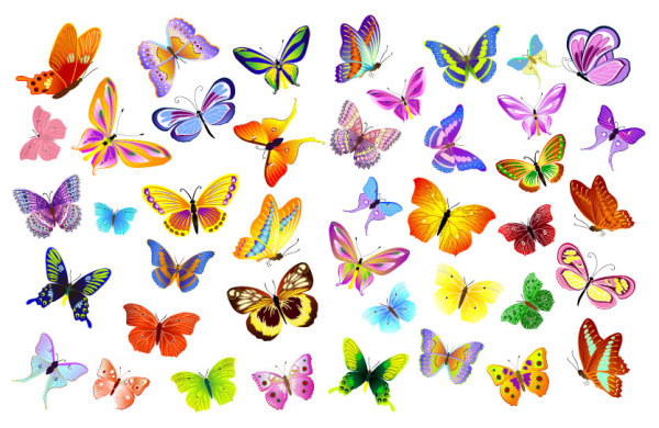 12 Butterfly Vector Free Download Images