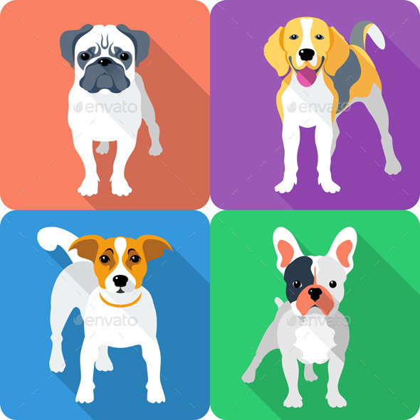 Icons Free Jack Russell Terrier