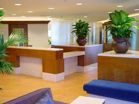 Interior Design Commercial Office