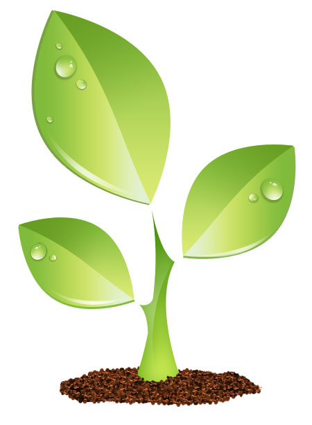 13 Growing Plant Vector Images - Plant Growth Clip Art ...