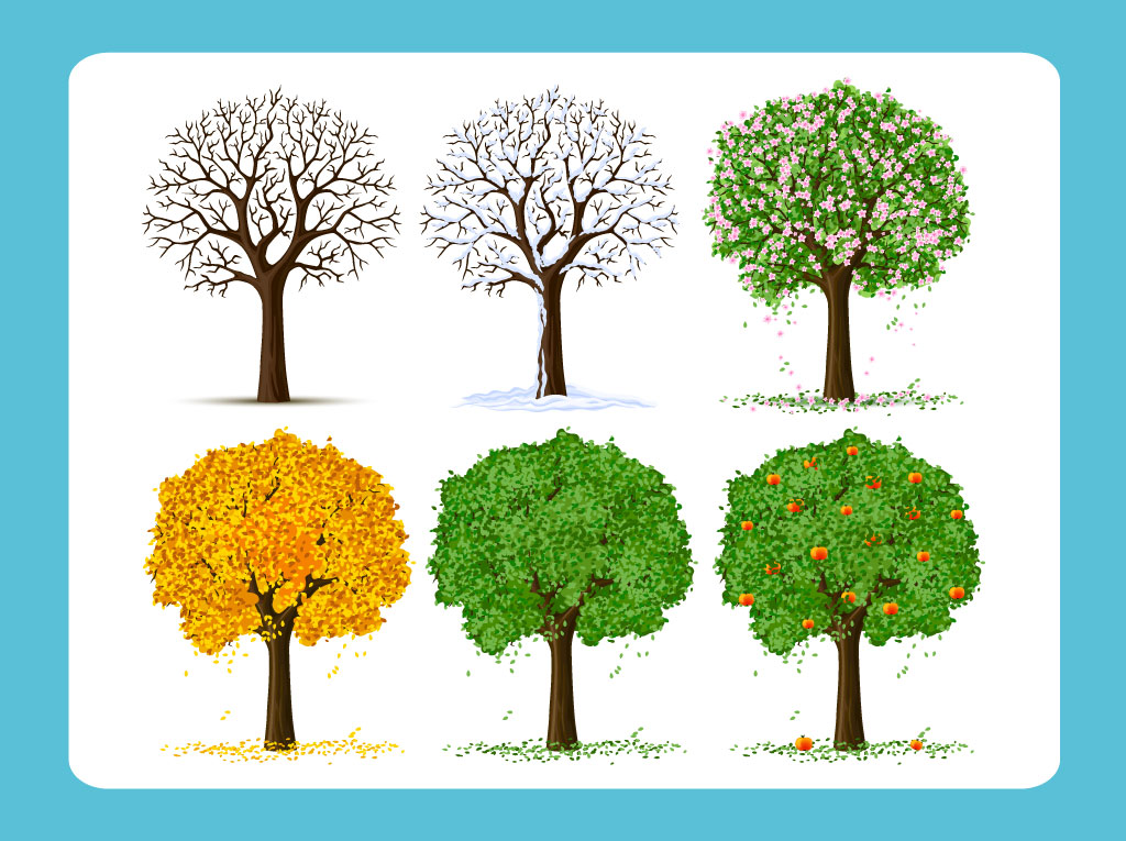 17 Free Vector Trees Images