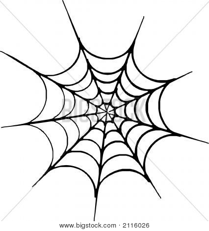 12 Spider Web Vector Art Images