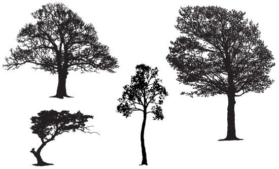 Tree Silhouette Free Vectors