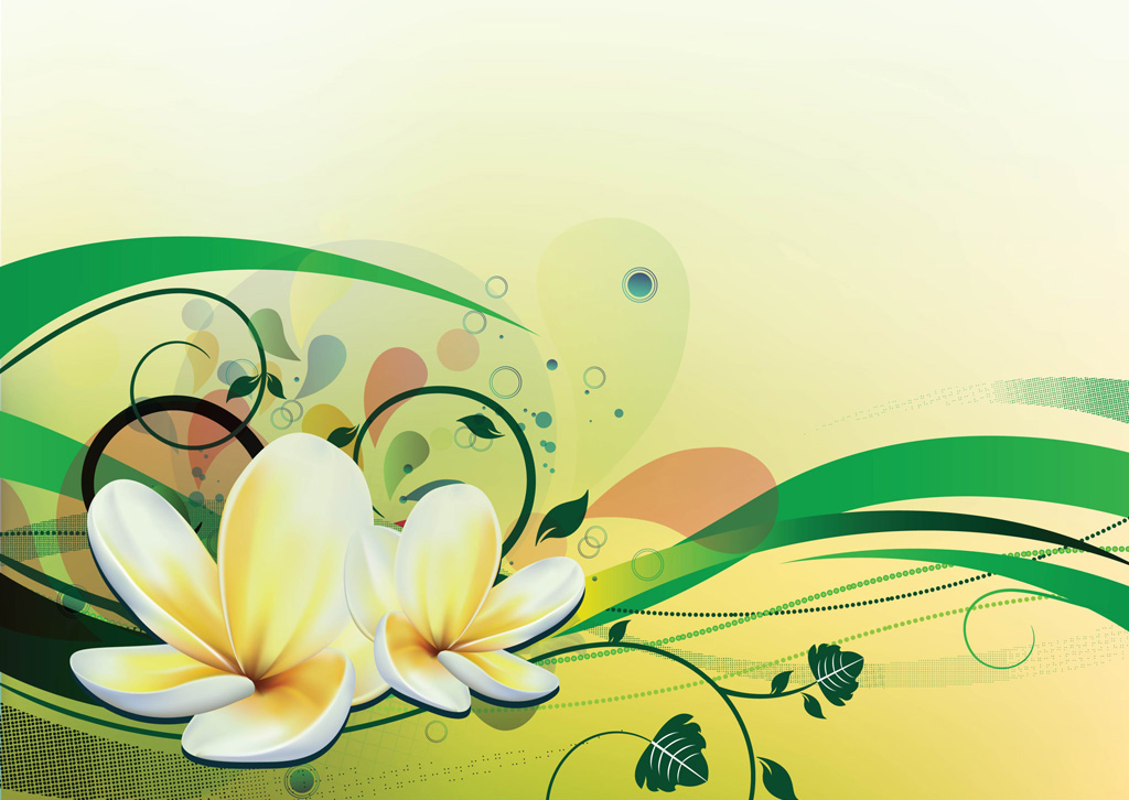 13 Lily Vector Designs Images