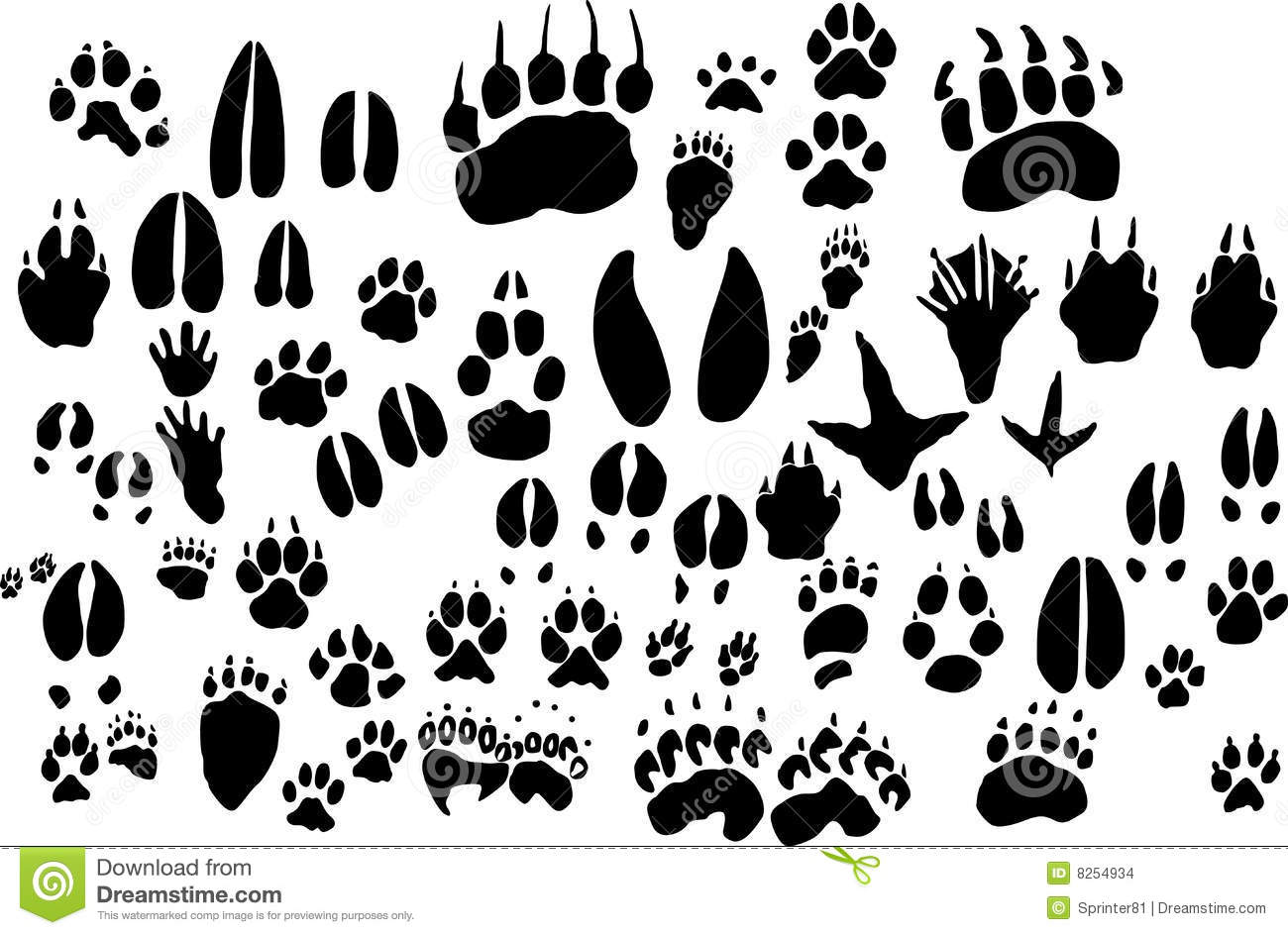 Animal Foot Print Outlines