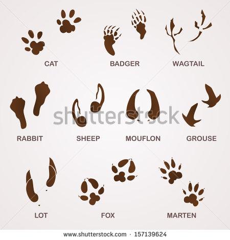 Animal Tracks Footprints Clip Art