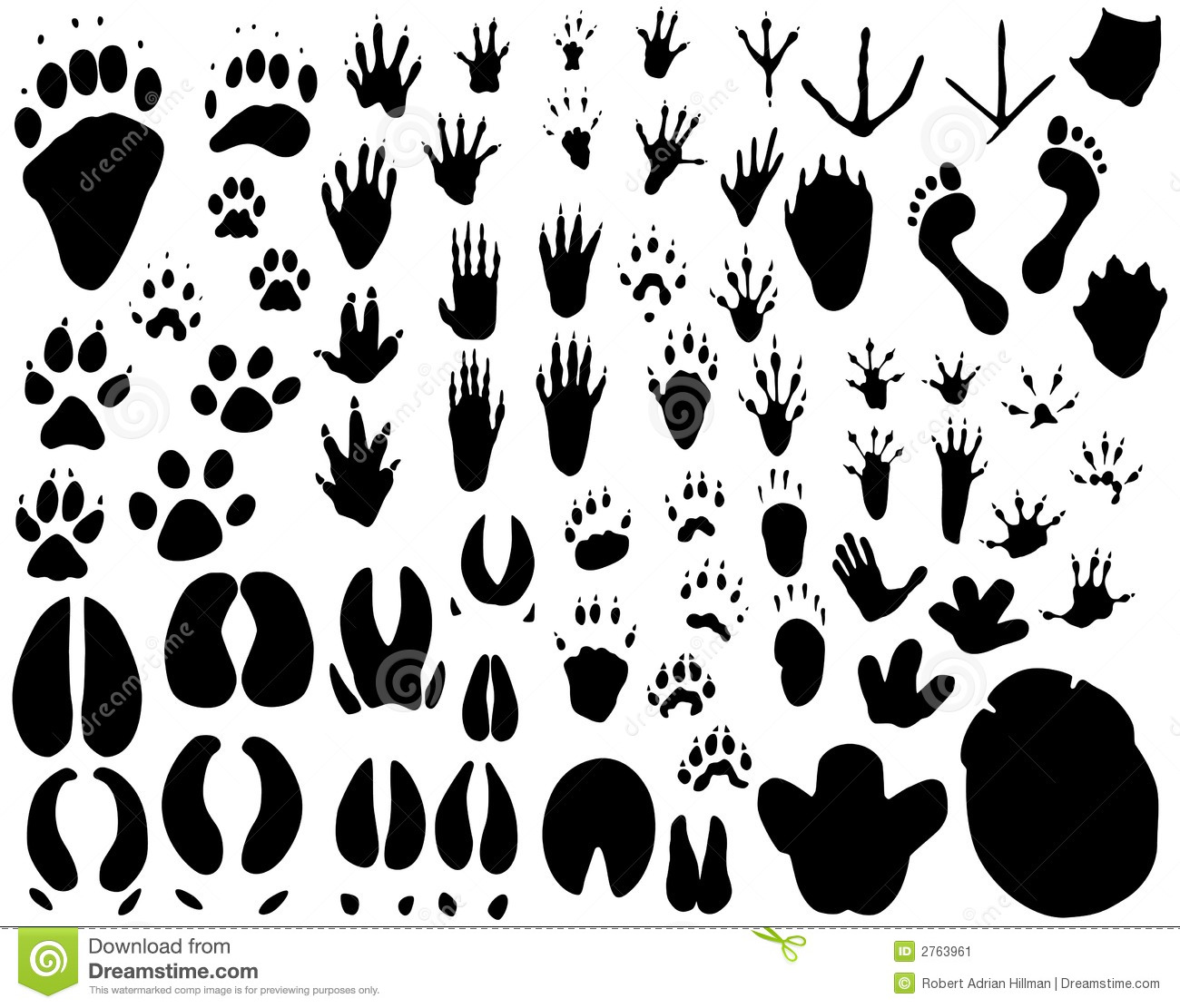 Animal Tracks Silhouette