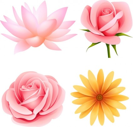 11 Beautiful Flowers Vector Free Download Images