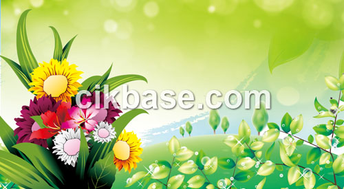 11 Download Photoshop Free PSD Designs Images