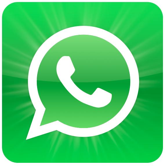 Whats App Icon Vector