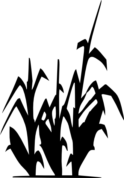 17 Harvest Cornstalk Vector Images