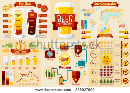 Craft Beer Types Infographics