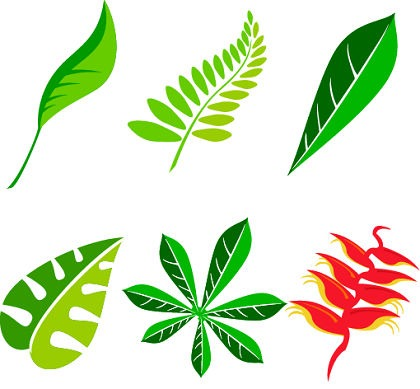 15 Leaves Free Vector Graphics Images