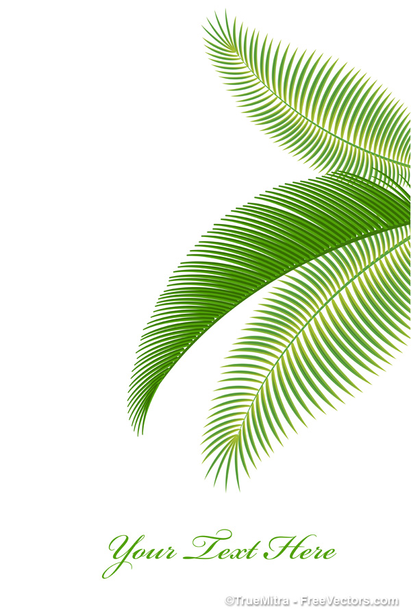 16 Palm Leaf Vector Free Images