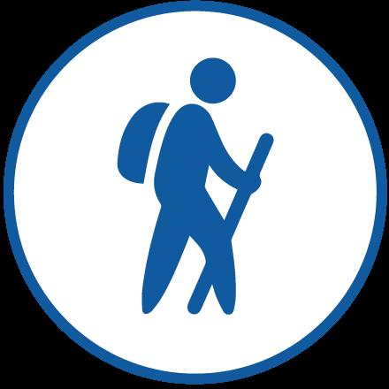 Activity Program Icon