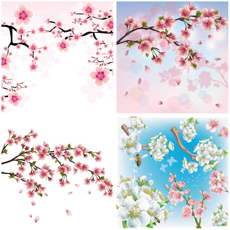 18 Cherry Blossoms Branch Vector Graphics Images