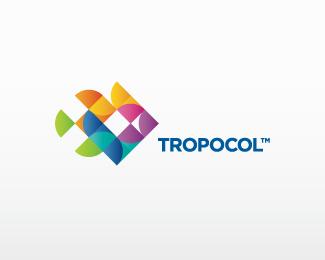 Colorful Logo Designs
