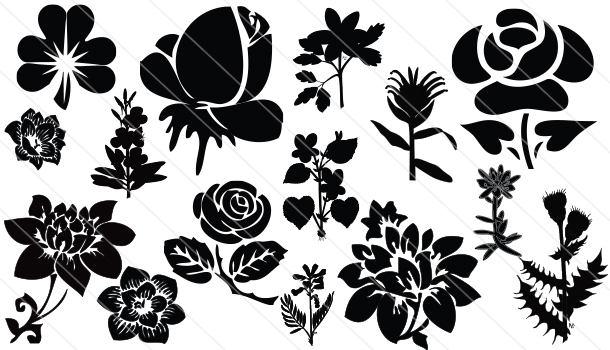 Flowers Silhouette Vector