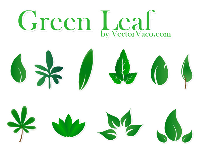 14 Green Leaf Vector Images
