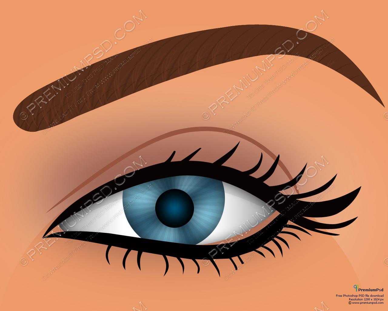 Women's Eyes Vector