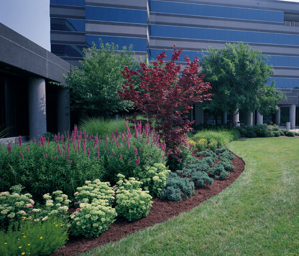 19 industrial landscape design images commercial for Commercial landscape design