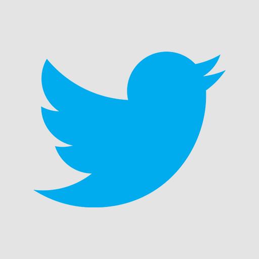 Flat Twitter Icon