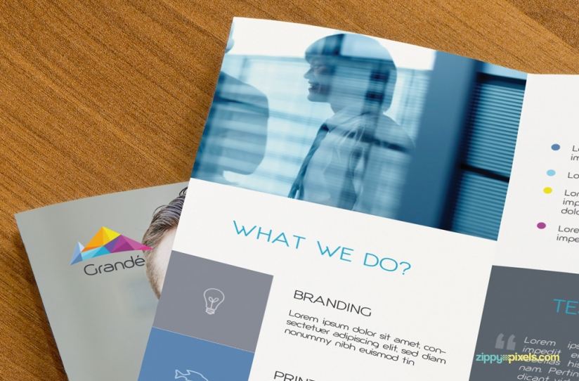 Free Professional Business Flyers