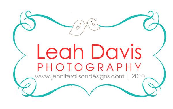 Photography Business Logo Design