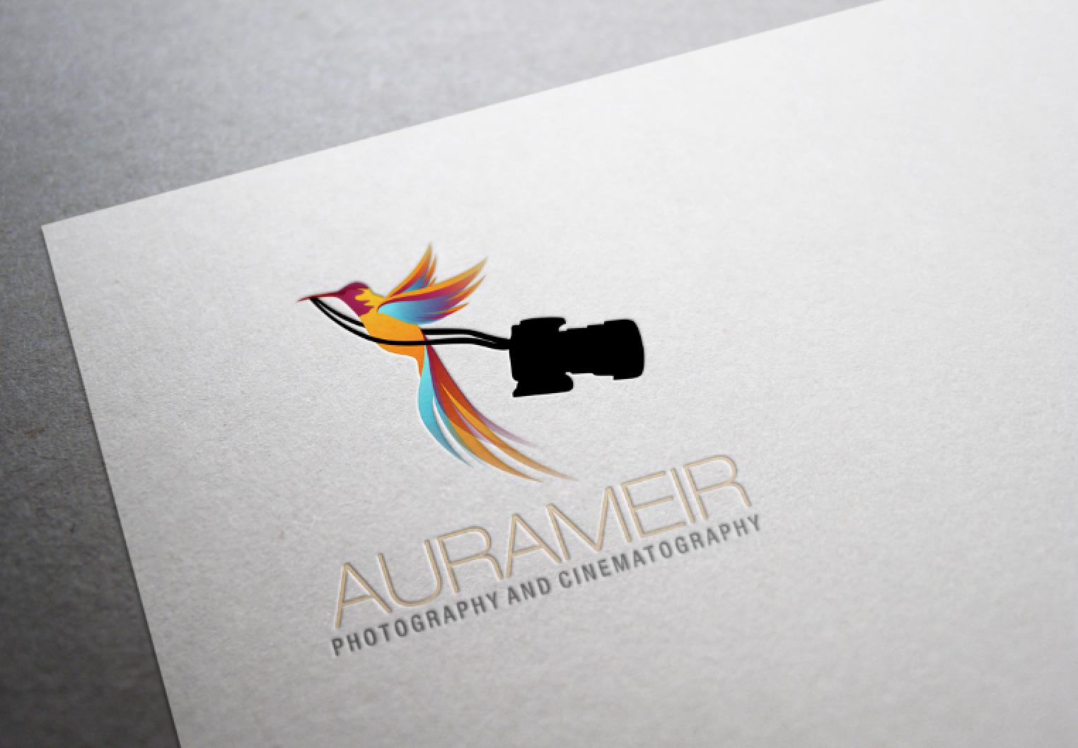 17 photography business logos images photography